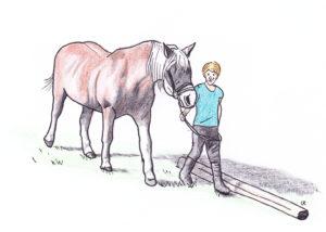Pferdeführerschein Umgang im März