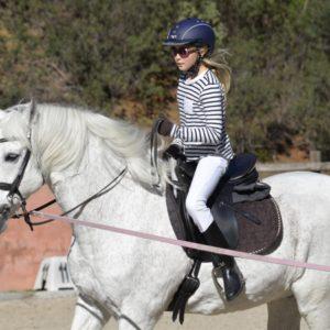 Das ABC der Reiteinstieger bietet Ihnen einen guten Einstige in die Reiterwelt. Mit Erklärungen, die Sie verstehen lassen, wie man mit Kreuz reitet und seine Gewichtshilfen gut einsetzt.