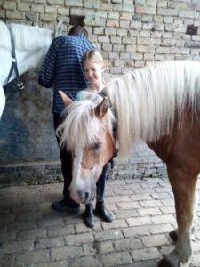 Pferdeführerschein Umgang für Kinder